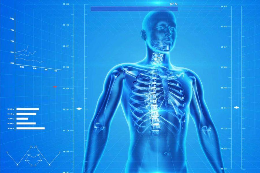 Porösen Knochen gegenwirken - Osteoporose (pixabay)